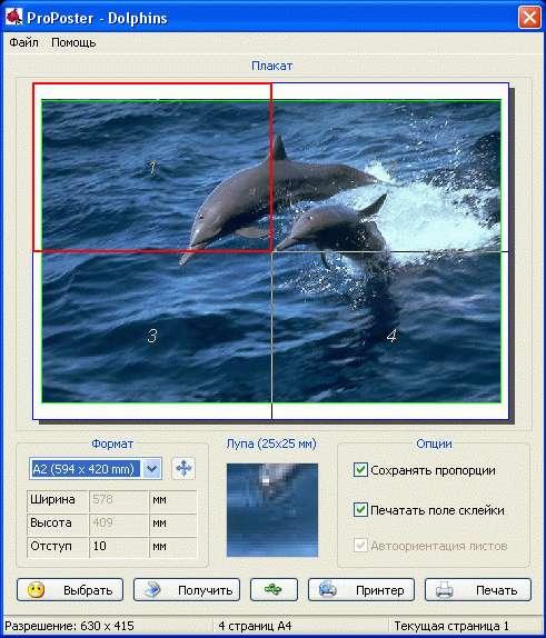 Скачать ключ для ronyasoft poster printer 3.01.23 - 4.